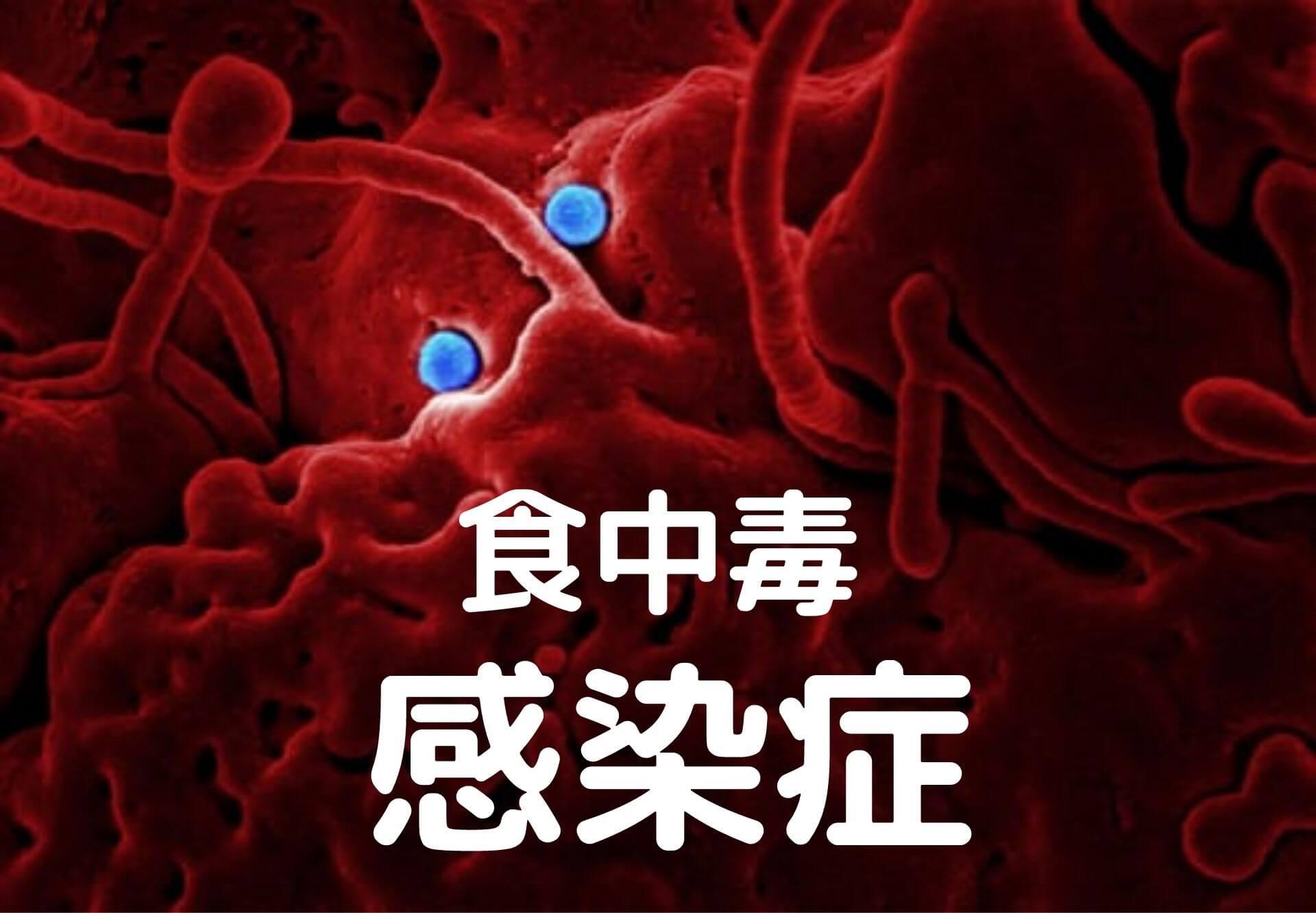 食中毒と感染症